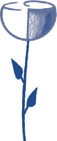 flor-contacto